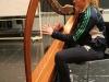 13 harp
