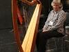 13c harp