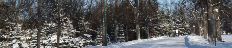 Comhaltas Winnipeg